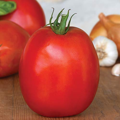 Burpee Exclusive 'SuperSauce' Hybrid | Large Red Sauce & Paste Tomato | 25 Seeds ()