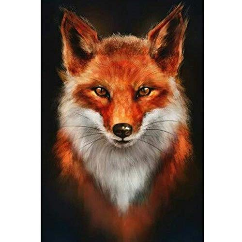 5D Diamond Painting Full Drill DIY Diamond Painting Kits for Adults for Home Art Painting Decoration Fire Fox Animal 11.8x15.7in 1 by Loxfir
