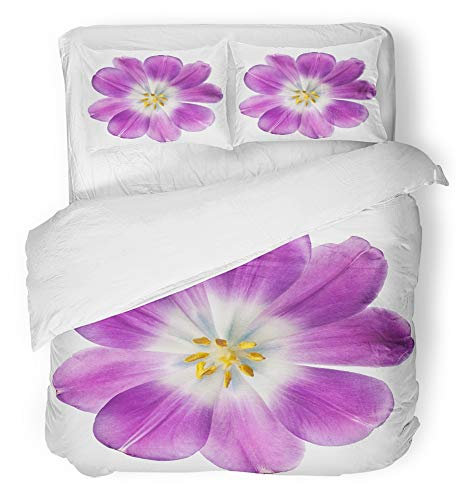 (Emvency 3 Piece Duvet Cover Set Breathable Brushed Microfiber Fabric Yellow Petal Purple Tulip White Beauty Blossom Botanical Bright Bulb Closeup Bedding Set with 2 Pillow Covers Twin Size )