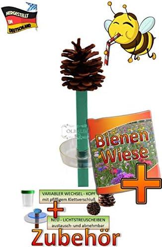 ÖLBAUM Insekten-6x-Tränkstab Tränke braun-rot-schwarz-O XXL 100 cm Bienentränke, LICHTFALLE/Scheibe BLAU-ORANGE, Bienenfutterstation für Wildbienen, Hummeln Schmetterlinge schwarz a