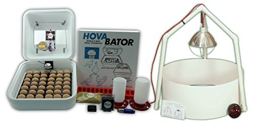 HovaBator Ultimate Egg Incubator Combo Kit