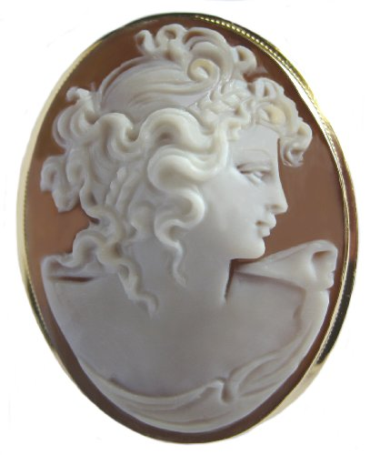 18k Cameo Brooch (Cameo Brooch and Pendant Reflection of Youth Sardonyx Shell 18k Yellow Gold Master Carved, Italian)