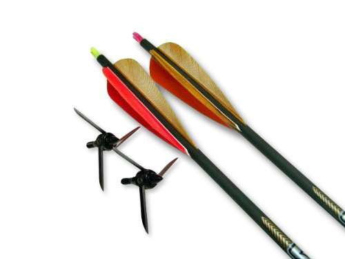 Broadhead Pin Bull (Bullhead Victory Arrows Kit, 100-Grain)