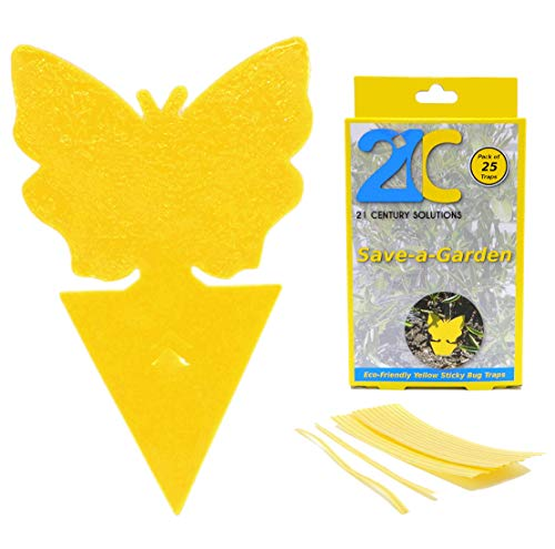 21C Yellow Dual Sticky
