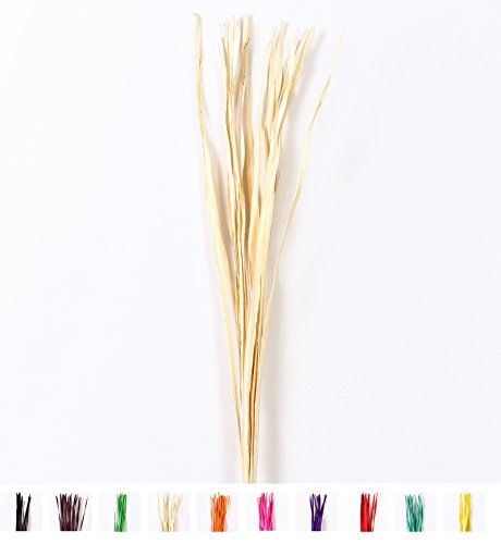Dried colored palm leaf bunch for floor vases decorative grass twig bunch, 1x47 inches,  Ecru by Leewadee