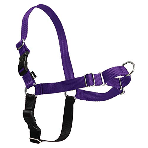 PetSafe Easy Walk Dog Harness, No Pull Dog Harness – Perfect for Leash & Harness Training – Stops Pets from Pulling and…