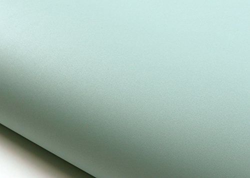 Peel & Stick Phoenix Solid Color Contact Paper Self-Adhesive Wallpaper Shelf Liner Table and Door Reform : 2.00 Feet X 6.56 Feet (SG59 : 2.00 Feet X 6.56 Feet) by ROSEROSA