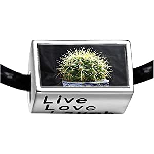 Chicforest Silver Plated Cute Cactus Photo Live Love Laugh Charm Beads Fits Pandora Biagi Troll Chamilia Kay's Beads Charms