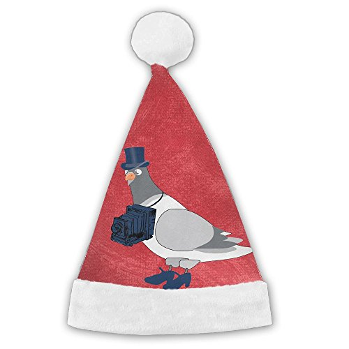 Pigeon-Photographer-Clipart-Cartoon Caps Costume Lovely Christmas Traditional