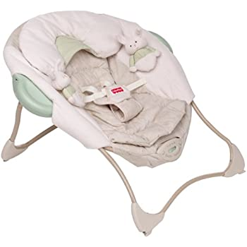 Amazon Com Fisher Price Baby Papasan Discontinued By