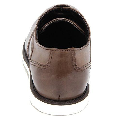 HOGAN 0311N scarpa classica FRANCESINA scarpe uomo shoes men tabacco Tabacco