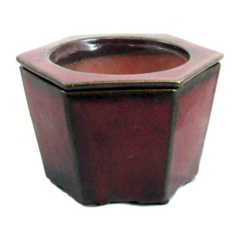 Self Watering Glazed Ceramic Pot - Red - 6 3/8