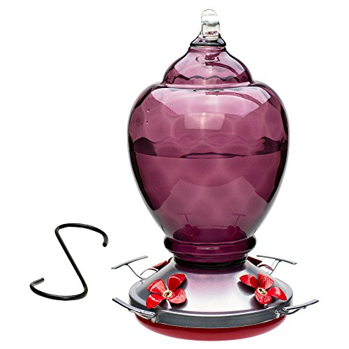 Best Home Products Hummingbird Feeder, Glass, 28 ounces, Almond Breeze
