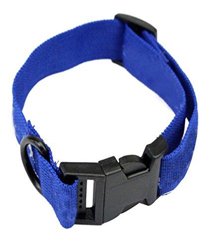 Binmer(TM)New Pet Fleas Circle Dog Pet Flea Collars Remove the Fleas Fucntion Dog Collars Dog Tie Harley baby Puppy