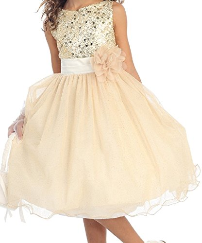 Big Girls' Gorgeous Sequined Round Neck Tulle Flower Corsage Pageant Flower Girl Dress Gold 12 (K30D5) (Neck Sequined)