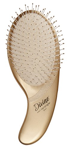 Olivia Garden Divine Revolutionary Ergonomic Design Hair Brush DV-1 (Wet Detangler)