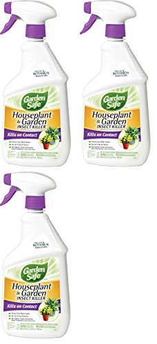 Garden Safe 80422 Houseplant and Garden Insect Killer 24-Ounce Spray, 3 Pack