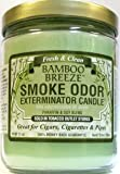 Odor Exterminator Candle Bamboo Breeze 13oz
