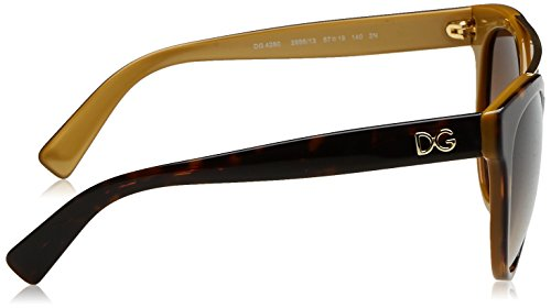 D&G Dolce & Gabbana Women's 0DG4280 Round Sunglasses, Top Havana On Gold, 57 mm by Dolce & Gabbana (Image #3)