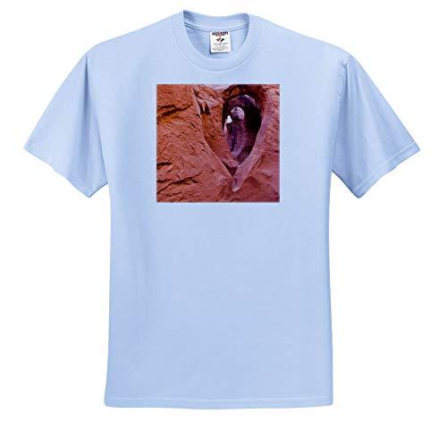 3dRose Danita Delimont - Utah - Sandstone Formations in Peek-a-Boo Gulch, Utah, USA. - Toddler Light-Blue-T-Shirt (4T) (ts_315074_65) (Peek A Boo Pink Or Blue Shirt)