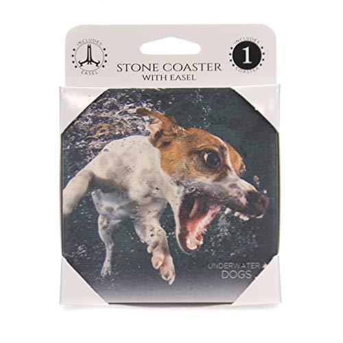 Jack Russell Terrier Coaster - Animal JACK RUSSELL TERRIER UNDERWATER Stone Stone Coaster Easel 58616