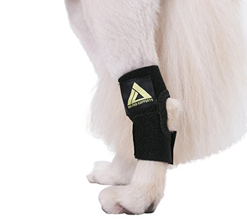 Image of Dog Canine Rear Leg Hock Joint Wrap Protects Wounds as They Heal Compression Brace Heals and Prevents Injuries and Sprains Helps with Loss of Stability Caused by Arthritis by My Pro Supports