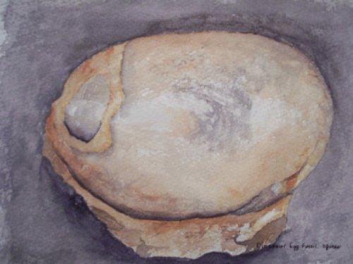 Dinosaur Egg Fossil (Fossil Dinosaur Eggs)