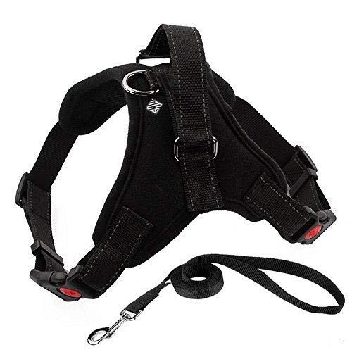Arnes para perro, pechera comoda y ergonomica color negra talla grande, mediana, y chica; con bono de correa de 1.2 metros...