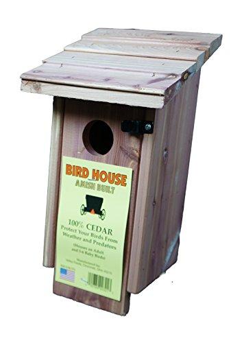Amish Built Cedar Bird House (Yourself Wren Kit)
