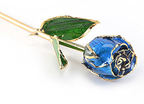 M Dream Long Stem Trimmed 24K Real Rose Dipped in Gold Blue 11 Inches Set of 1,Best Gift for Her, Women, Girlfriends, Wife, Girl, Valentine's Day, Mother's Day, Anniversary, Birthday, Wedding by M Dream (Image #2)