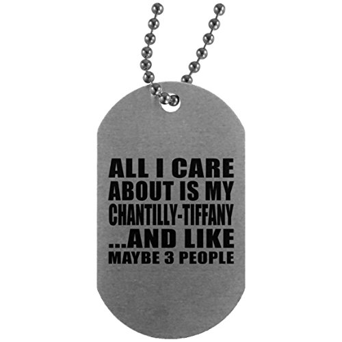 (All I Care About Is My Chantilly-Tiffany - Silver Dog Tag Military ID Pendant Necklace Chain - Gift for Cat Pet Owner Lover Friend Memorial Mother's Father's Day Birthday Anniversary)