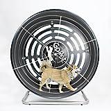 GoPet Treadwheel ToySmall (<25lbs)