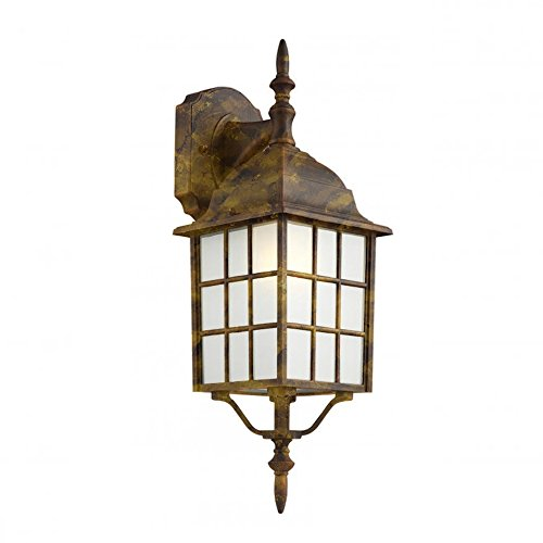 Transglobe Lighting 4420-1 BG Outdoor Wall Light with Frosted Glass Shade, Black Gold Finished (Bg Outdoor One Light)