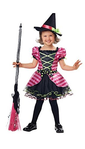 Hyde & eek Toddler Girls Whimsical Witch Costume- Dress & Hat Size 2T-4T ()