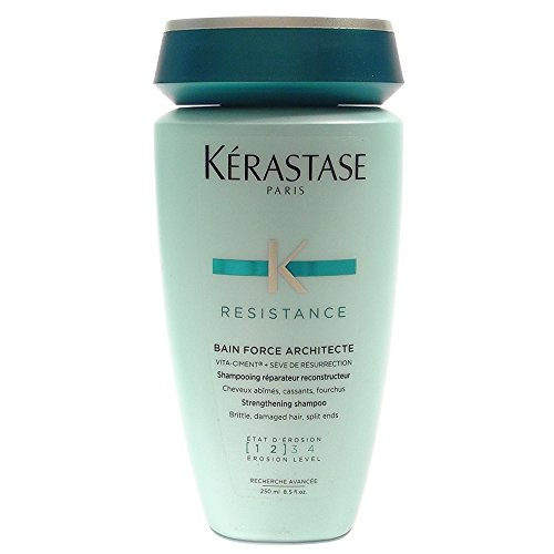 Resistance Bain De Force Architecte Reconstructing Shampoo Kerastase Shampoo 8.5 oz Unisex by Designer - Warehouse Designer Find