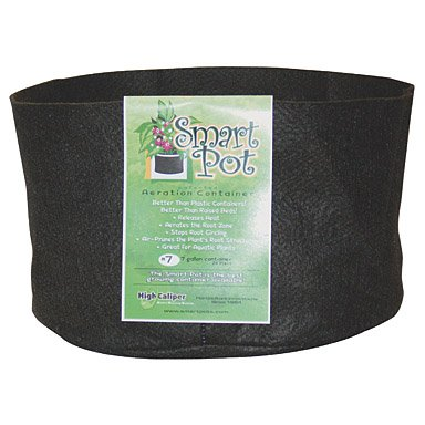 smart-pots-7-gallon-smart-pot-soft-sided-container-black