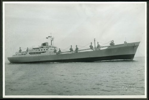 Dutch Cargo Liner M S Norma photo 1960s -