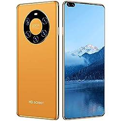 FLAMY Dual-SIM Smartphone,Mate50 Pro, 7,3 Zoll, 24,0 + 48,0 MP, 10-Kern-Prozessor, 6000 mAh, Unterstützung der TF…