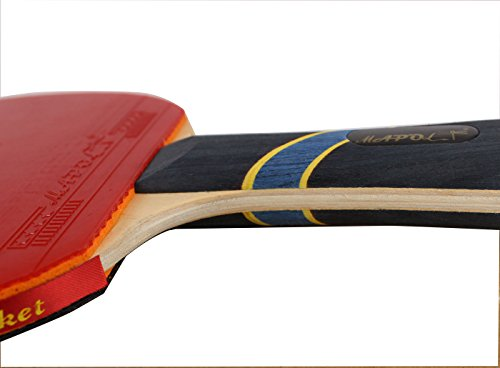 Mapol 4 Star Professional Ping Pong Paddle Advanced