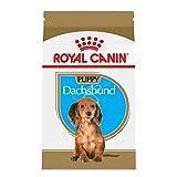 Royal Canin Dachshund Puppy Breed Specific Dry Dog Food, 2.5 lb. bag