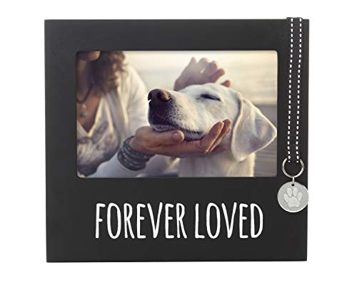 Pearhead Picture Frame, The Perfect Gift For The Pet Lover Or Pet Owner