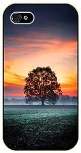 iPhone 5C Morning sunrise, tree - black plastic case / Nature, Animals, Places Series