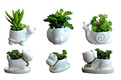6 PCS Set Cute Cartoon Animal Cat Dog Hippo Snail Tortoise Cow Shaped Ceramics Succulent Cactus Flower Pot/Plant Pots/Planter/Container for Home Garden Office Desktop Decoration
