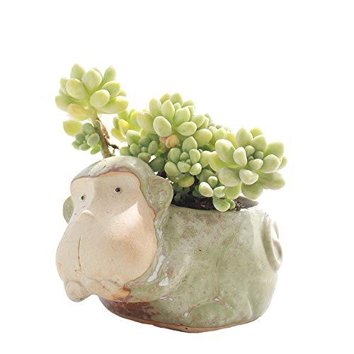 YOURNELO Vintage Ceramic Animals Plant Flower Pot Succulent Planters Vase ()