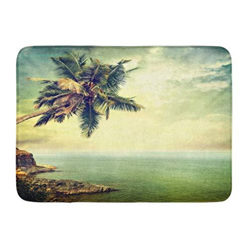 - Pujin Logistics Doormats Bath Rugs Outdoor/Indoor Door Mat Blue Beach Vintage Palm Tree Retro Ocean Caribbean Hawaii Bathroom Decor Non-Slip Rug 16