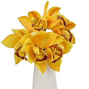 Rinlong Artificial Cymbidium Orchid Silk Flowers 59