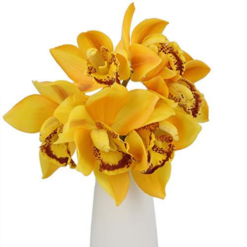 (Rinlong Artificial Orchid Yellow Silk Cymbidium Flowers Stems 3pcs for Floral Arrangement Home Wedding Party Decoration)