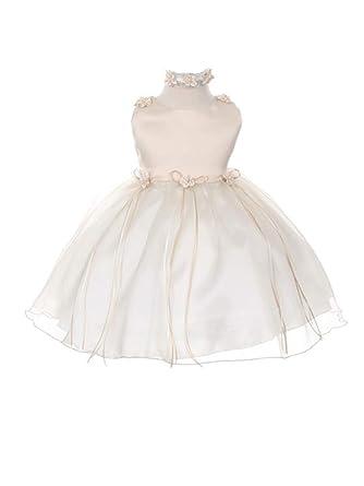 1e5ec16a1c8 Kid s Dream Baby Girls Champagne Organza Rosebud Ribbon Flower Girl Dress 6M