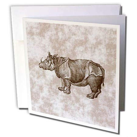 Envelopes Patterned (3dRose Russ Billington Designs - Vintage Rhino Engraving on Patterned Background - 12 Greeting Cards with envelopes (gc_291591_2))