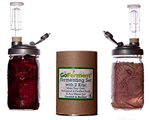 Go Ferment! Wide Mouth Mason Jar Mold Free Anaerobic Fermenting Kit w/ Recipe E-book (2 Pack, Grey)